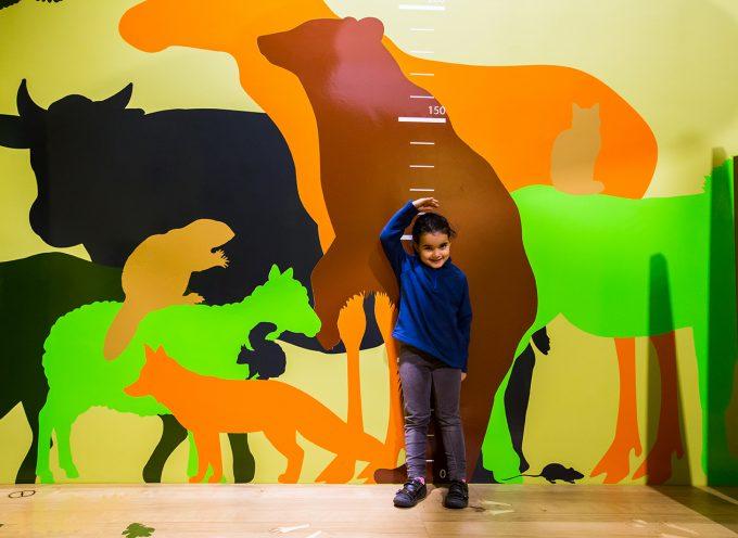 En route pour le Children In Museums Award?