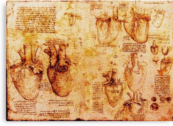 De Vinci : 500 ans d'un génie polyvalent